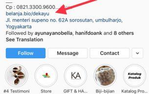 Tips Promosi Properti dengan Bio Instagram